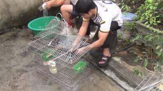 Download MỘT NGÀY SỐNG Ở TIỀN CHỦNG VIỆN XÃ ĐOÀI K.XIV Video