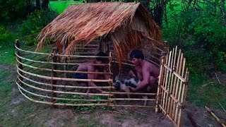 Download Builder Best Video: Save Wild Pig From Hole and Building Mini Wild Pig House ,Wild Boar House Video