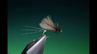 Download Tying a Sepia dun with Barry Ord Clarke Video