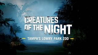 Download Creatures of the Night Video