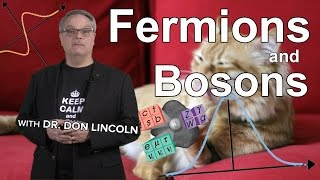Download Fermions and Bosons Video