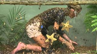 Download Alex Best Gets Feathered Searching For Stars | I'm A Celebrity...Get Me Out Of Here! Video