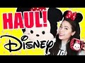 Download MEGA DISNEYLAND HAUL! | SandyDynamite Video