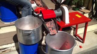 Download Processing tomatoes - removing water from tomatoes - canning tomato sauce Video