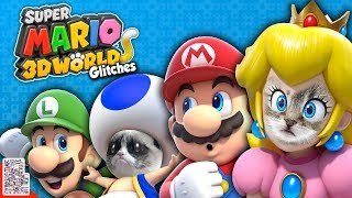Download Cats Everywhere - Glitches in Super Mario 3D World - DPadGamer Video
