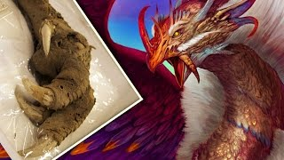Download Mythical Creatures That Actually EXISTED! Video