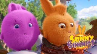 Download Sunny Bunnies - ADVENTURE DAY | Cartoons For Children | Funny Cartoons For Children Video