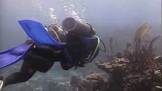 Download Math Behind the Decompression Dive Tables Video