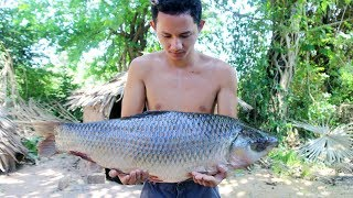 Download Amazing Cooking Big Fish Recipe - How to Primitive Cooking Biggest Fish Soup Recipe |Wilderness Life Video