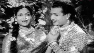 Download Bala Nagamma Movie Songs - Virisindi vintha haayi - Taraka Rama Rao, Anjali Devi, S. V. Ranga Rao, Video