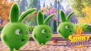 Download Cartoons for Children | SUNNY BUNNIES - TRIPLE HOPPER | Funny Cartoons For Children Video