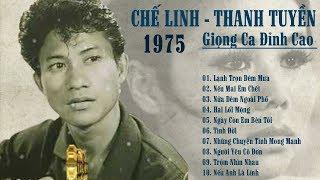 Download Chế Linh Thanh Tuyền Giọng Ca Hải Ngoại Đỉnh Cao - 1000 Nguời Nghe Thì 999 Nguời Phải Khen Hay Video