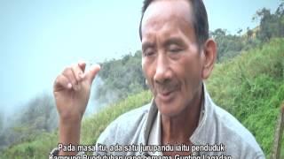 Download SEJARAH GUNUNG KINABALU & EKSPEDISI GUNUNG KINABALU 2012 WBC Video