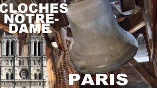 Download Cathédrale Notre-Dame de Paris - Sonnerie du Grand Solennel - Plenum - HD Video