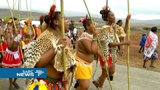 Download Latest update on the reed dance in KwaNongoma Video