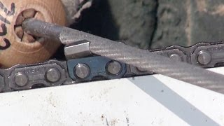 Download 3 Chainsaw Sharpening Myths Video