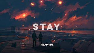 Download Post Malone - Stay (Lyrics) Video