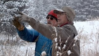 Download In Search Of A Classic Kilcher Christmas Tree 🎄 Alaska: The Last Frontier Video