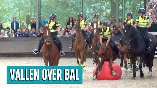 Download Valt paard over bal op Open Dag Bereden Politie? | Vlog #30 Video