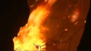 Download Fire in Israel,Haifa. Million people are transferred - November 2016 Video