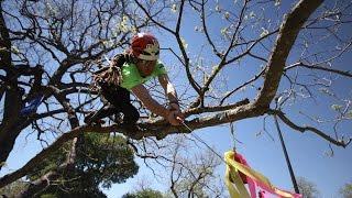 Download 2016 World Tree Climbing Championship Final; James Kilpatrick ITCC Masters Video