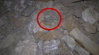 Download What The Heck Did I Find In This ABANDONED Nevada Gold & Silver Mine Tunnel? Is It A Bat Or A Bird? Video