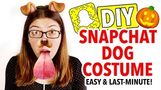 Download DIY Snapchat Dog Costume ~ Last Minute Halloween Idea - HGTV Handmade Video