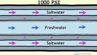 Download How Desalination Works Video