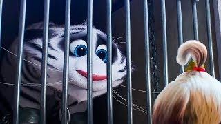 Download The Secret Life Of Pets 2 All Movie Clips & Trailers (2019) HD Video