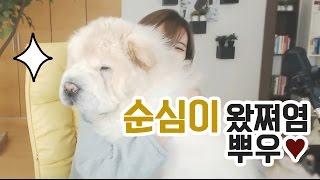 Download 김이브님♥오랜만에 순심이를 안아보았다 Video
