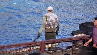 Download An incredible incident happened! WaterWorld stunt show at Universal Studios Hollywood Video