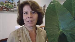 Download Entrevista a Rafael Zavala, Rep. FAO en Colombia e Hivy Ortíz, Oficial de Bosques de la FAO para ALC Video