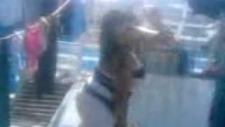 Download GORDITA ROMPE CALZONES BAILANDO REGGAETON Video