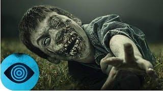 Download Kann The Walking Dead wirklich passieren? Video