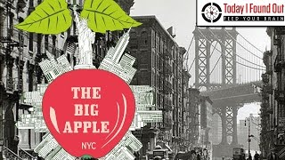 Download Why is New York City Called the Big Apple? Video