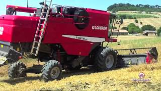 Download Mietitrebbia al lavoro: Laverda AL Quattro Techno | Perugia, 15-6-2013 Video