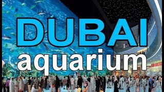Download Full Coverage of The Dubai Mall Aquarium in Max. HD 18+ minutes Video