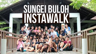 Download Sungei Buloh #InstaWalk With MNDSingapore and NParks! Video