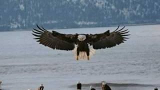 Download El Condor Pasa - George Zamfir Video