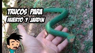 Download 7 Increíbles Trucos para Huerto y Jardín | La Huerta de Ivan 🔝 Video