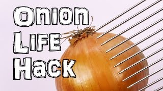Download How to cut an Onion Life Hacks Video