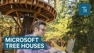 Download Microsoft's new tree houses are office spaces in the woods Video