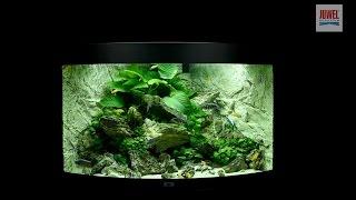 Download Juwel Aquarium Trigon 190 Einrichtungsbeispiel / Tutorial Video