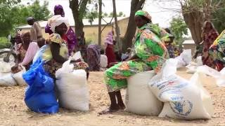 Download Science, Technology and Innovation for Sustainable Development Video