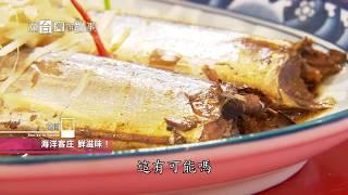 Download 【桃園】海洋客庄鮮滋味 在台灣的故事 908集 20180619 Video