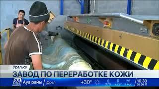 Download Завод по переработке кожи построен в ЗКО Video
