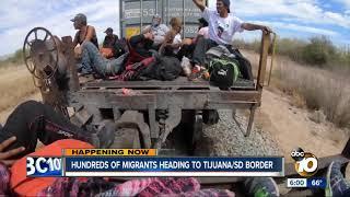 Download Hundreds of migrants heading to Tijuana/ San Diego border Video