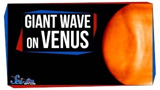 Download The Giant Wave on Venus Video