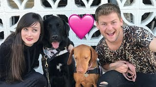 Download OUR SERVICE DOGS WENT ON A DATE! (live footage) W/ Stella & Drew Lynch! Video