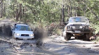 Download Subaru destroys 'real 4wds' in mud pit Video